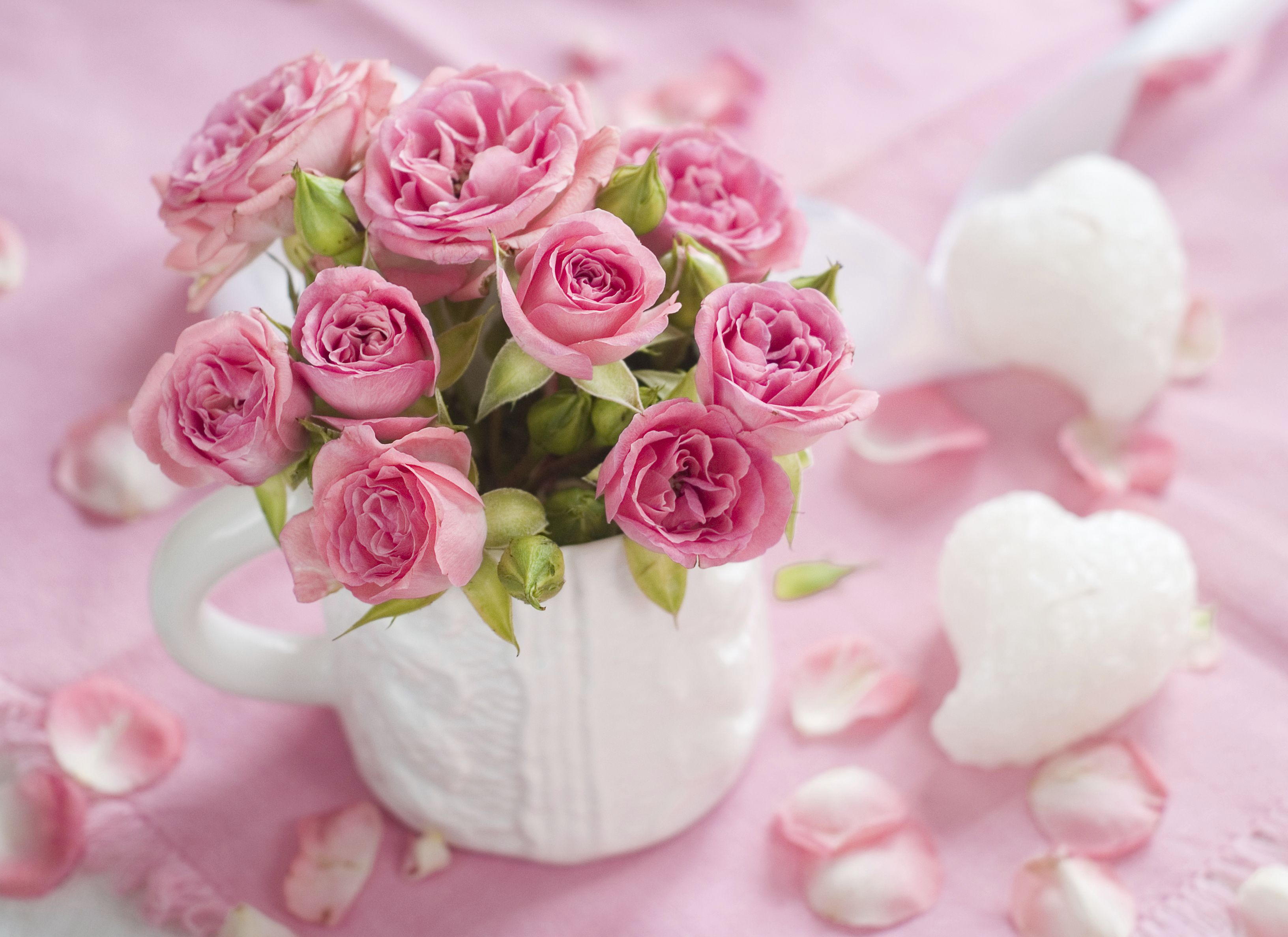 Saint Valentine's Day is approaching, and if you're still wondering how to surprise your sweetheart this year, get inspired!
