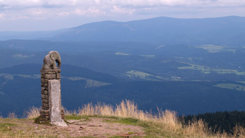 The summit of Kralický Sněžník