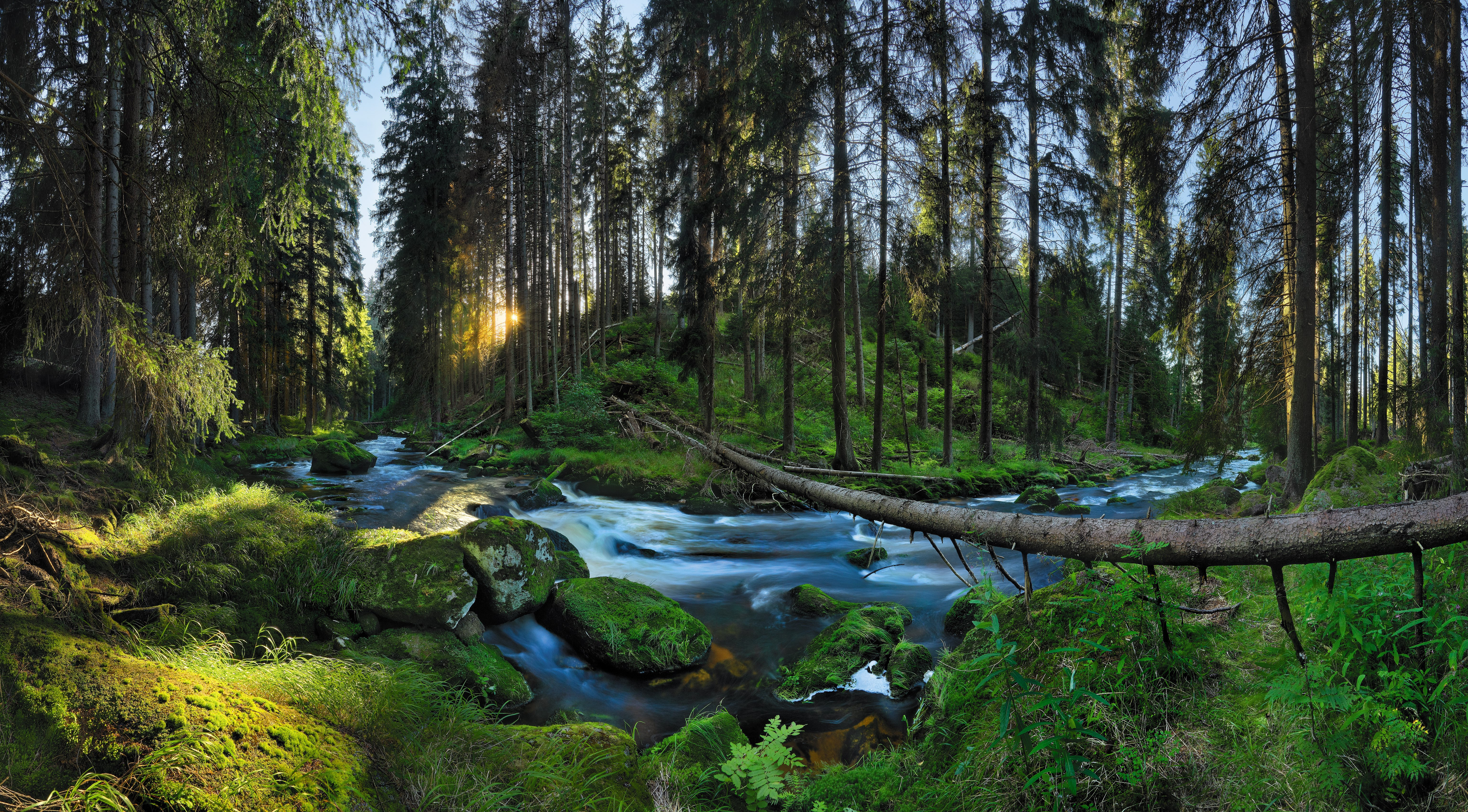 As March 22nd is celebrated as World Water Day, we have prepared an article to show you how important water is for the Czech Republic.
