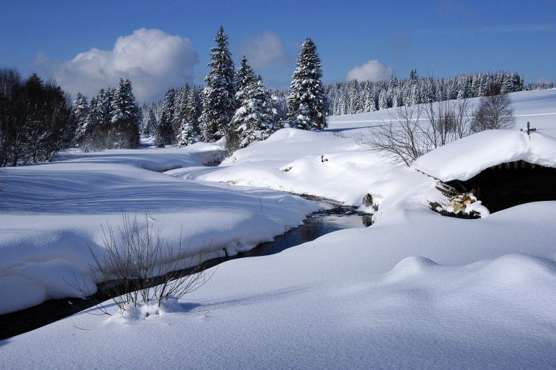 Šumava in the winter