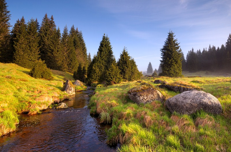 Šumava in the summer