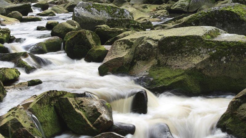 Böhmerwald – der Fluss Vydra