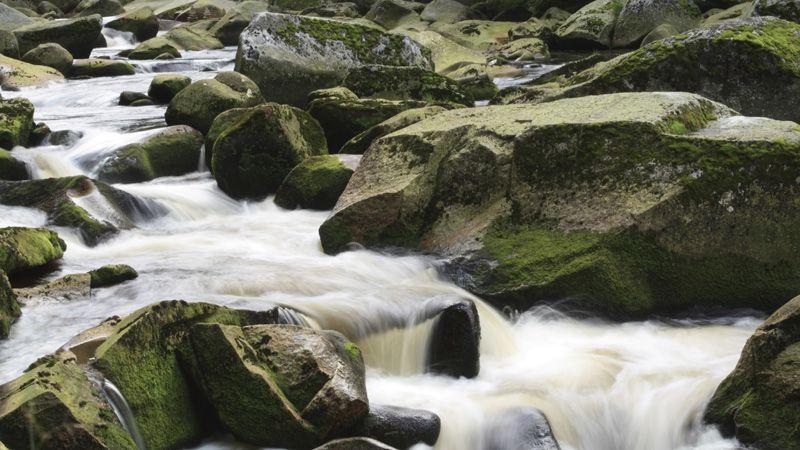 River Vydra