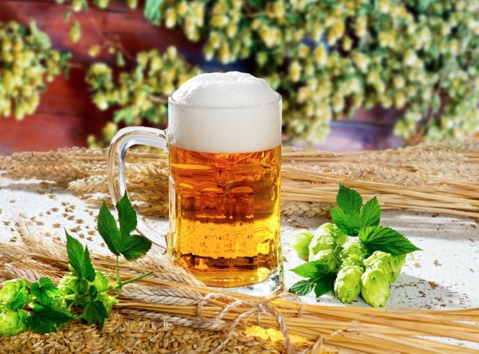 Qualifiée de boisson nationale, la bière tchèque attire de nombreux touristes étrangers et devient ainsi un produit touristique à part entère.