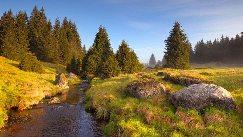 Šumava - Rokytka Stream