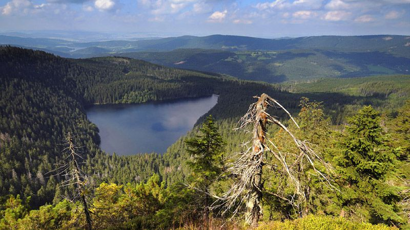 Šumava - Black Lake