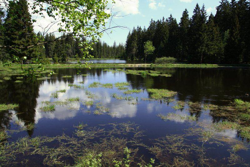 Kladská Nature Reserve near Mariánské Lázně