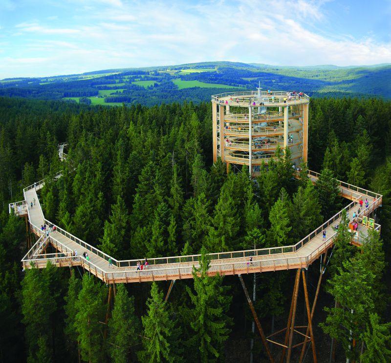 Lipno Treetop Trail