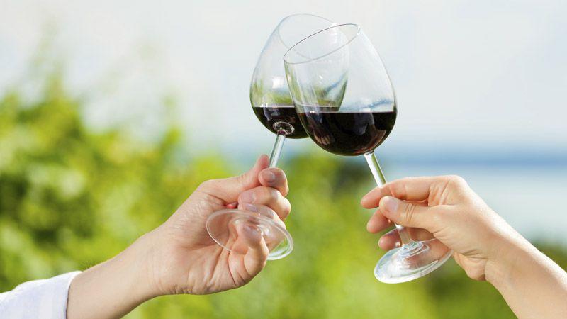 L'exploitation viticole de Velké Žernoseky