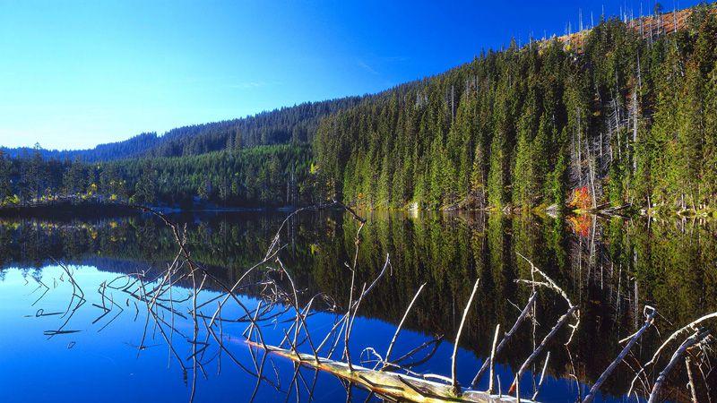 Böhmerwald – der See Prášilské jezero