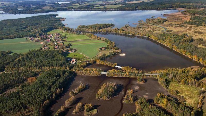 Environs de Třeboň - les étangs Vítek et Rožmberk