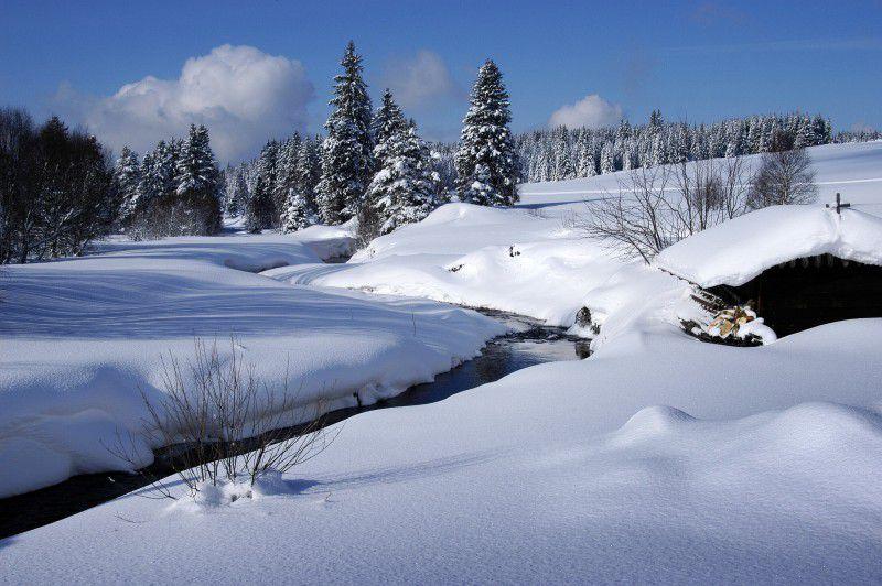 Šumava in the winter