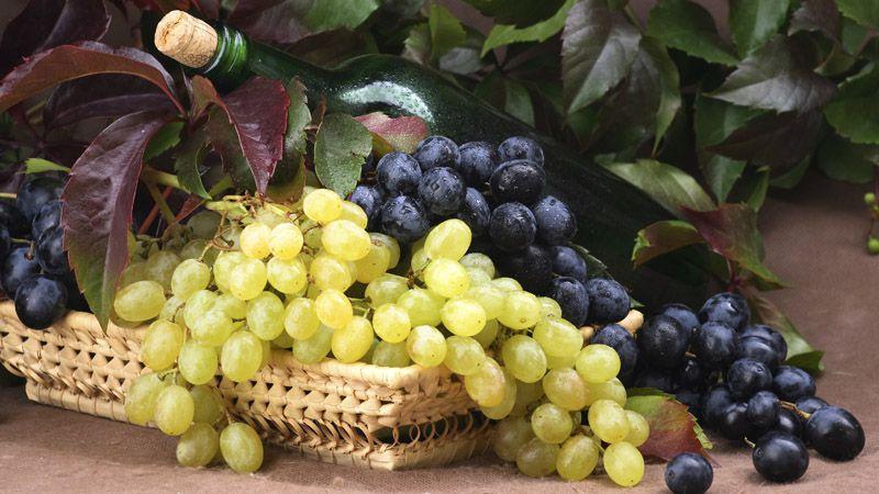 Bains de vin