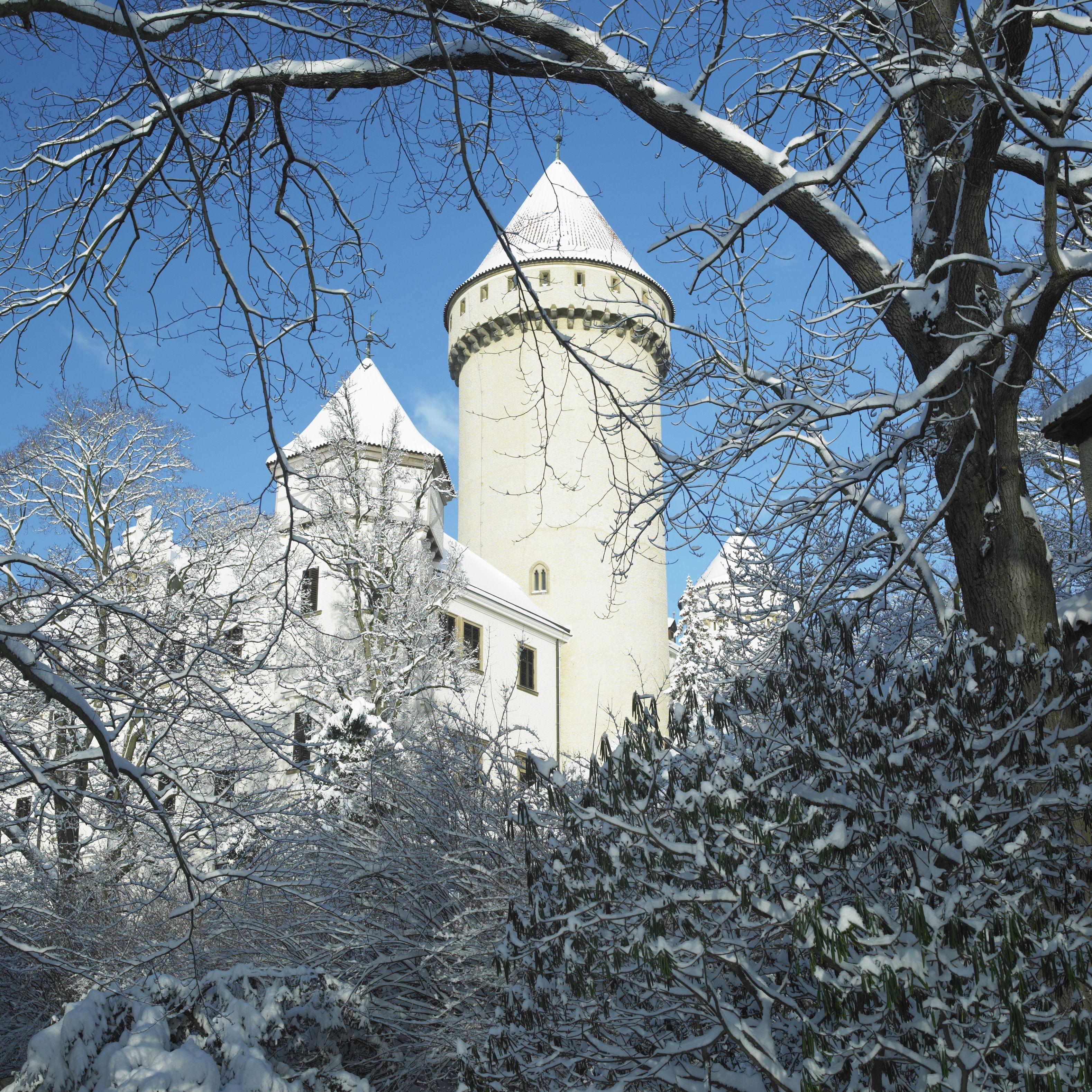 Zamek Konopiště