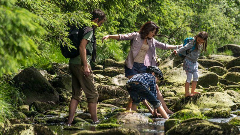 Selva Boema - turismo