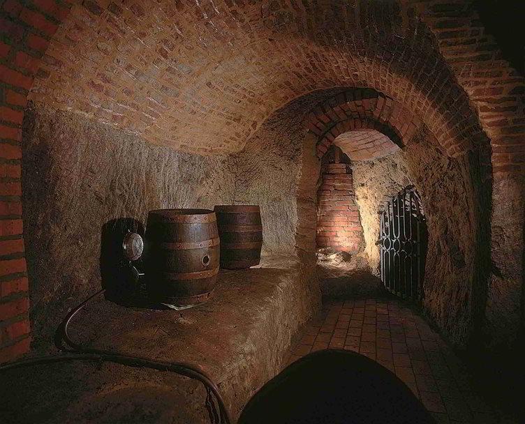 Пльзеньское подземелье